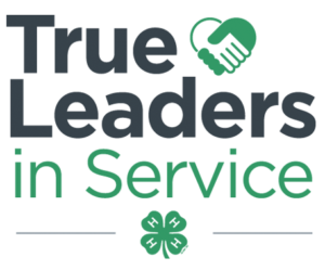 Cover photo for True Leaders in Service