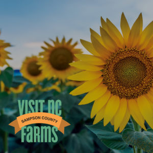 Cover photo for Take Advantage of the Visit NC Farms App!