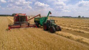 grain harvester