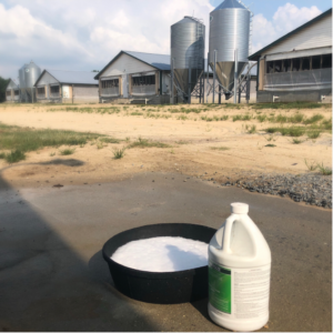 Cover photo for Farm Biosecurity: More Important Than Ever